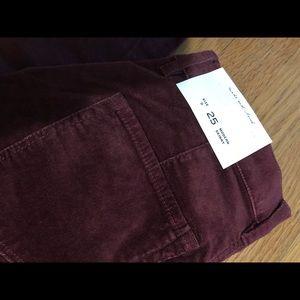 LOFT Velvet Pants - Size 0/25